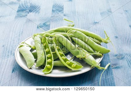 Fresh green peas in their pods italy