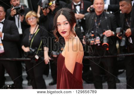 Nicole Warne attends the 'Slack Bay (Ma Loute)' premiere during the 69th annual Cannes Film Festival at the Palais des Festivals on May 13, 2016 in Cannes, France.