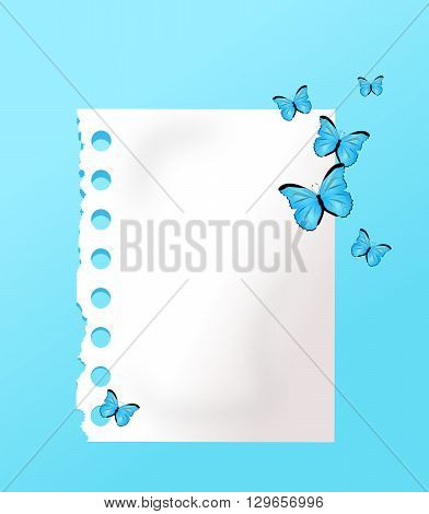 White paper sheet on light blue background decorated with blue butterflies