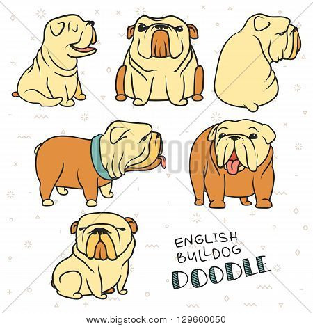 Dogs characters. Doodle dog. Sticker dog english bulldog. Funny character. Funny dogs. Funny animals. Dog isolated. Dogs set