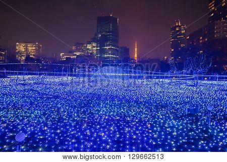 Best Tokyo christmas and winter season Illuminations at Tokyo Mid town