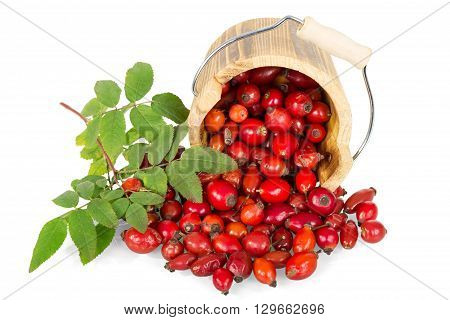 Rosehips in a wooden bucket isolated on white background