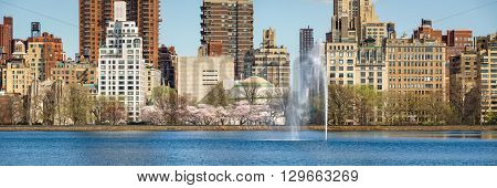 Spring at Central Park Reservoir on Upper East Side,  Manhattan, New York CIty. Yoshino cherry trees blooming along the running track with Jacqueline Kennedy Onassis Reservoir and fountain
