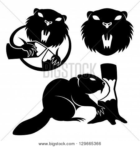 Vector set of beaver signs on a white background.