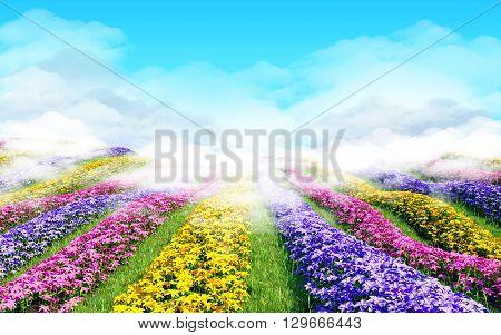 Fantasy floral cartoon 3d landscape. Colorful field of flowers, 3d illustration
