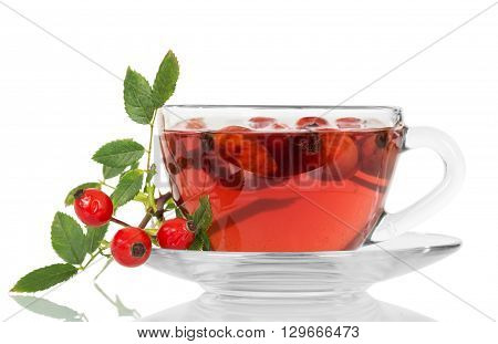Cup of tea from a dogrose isolated on white background