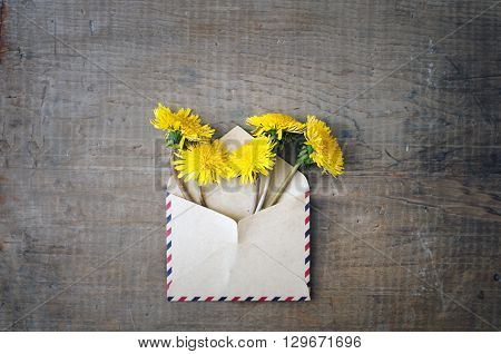 Dandelion Flowers In The Envelope