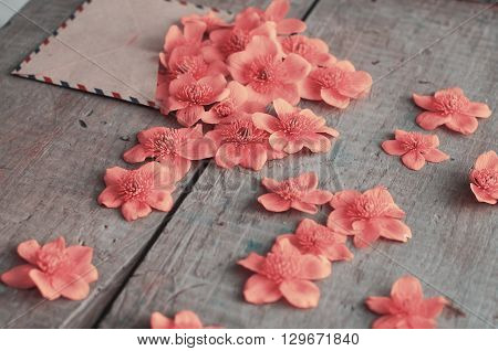 Pink Flowers In The Old Envelope