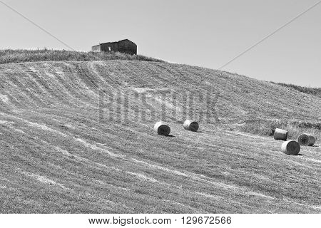 Landscape of Sicily with Many Hay Bales Vintage Style Toned Picture