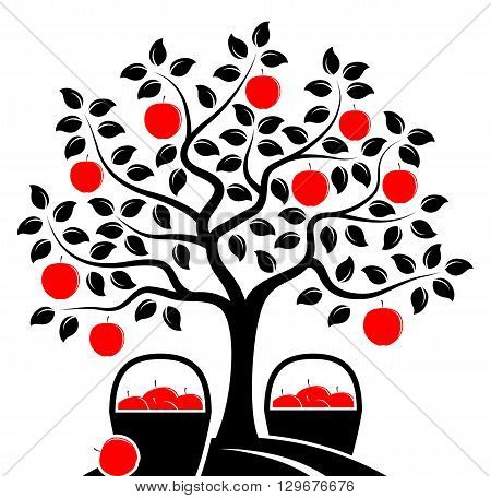 vector apple tree and baskets of apples isolated on white background