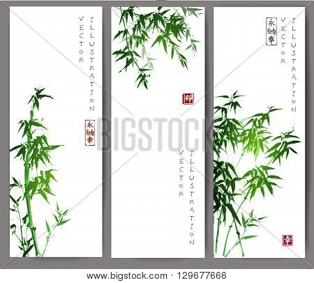 Three banners with green bamboo trees. Vector illustration. Traditional Japanese ink painting sumi-e. Contains hieroglyph - happiness.