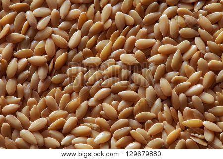 golden flax seeds flax seeds yellow flax seeds of flax flax grains yellow linseed golden flaxseed