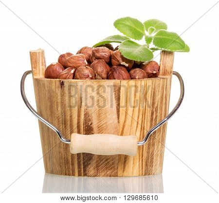 Hazelnuts in a wooden bucket isolated on a white background