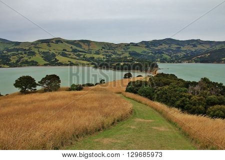 Landscape on the Banks Peninsula New Zealand. Onawe centre of a old volcano.