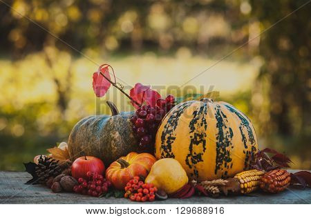 Happy Thanksgiving still life. Fruits, nuts and vegetables, fall crop on  the table outdoor
