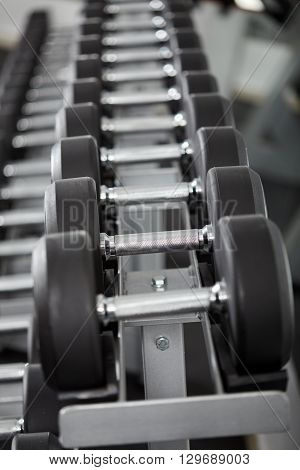 Dumbbells On The Rack