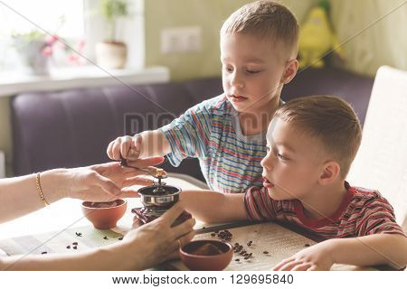 Twin Brothers Helping Her Mother To Grind Coffee