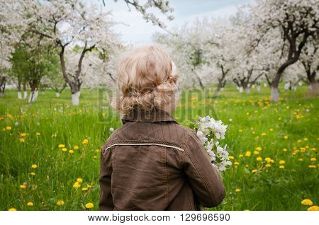 gentle portrait little caucasian holding a bouquet of flowers in the midst of young apple trees in the garden. view from the back