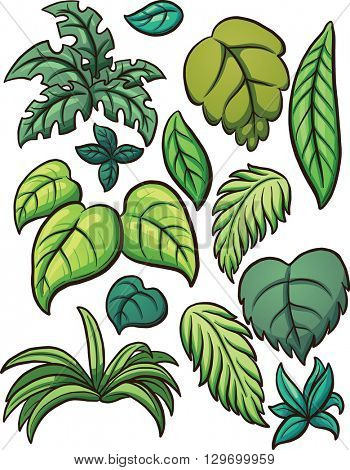 Tropical leaves. Vector clip art illustration with simple gradients. Each on a separate layer.