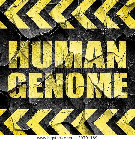 human genome, black and yellow rough hazard stripes