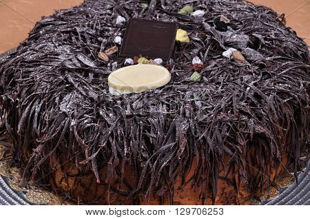 Prepared for special occasions, delicious and beautiful chocolate cake