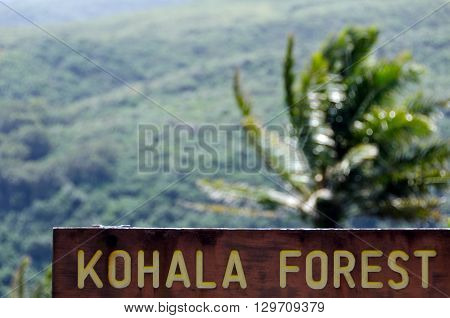 Entry To Kohala Forest Reserve Near Pololu Valley