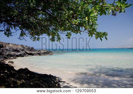 Shadows Of Kaunaoa Beach
