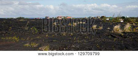 Lava Flow Field Near Kalapana,