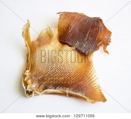 dried fish shark  for cooking on white background
