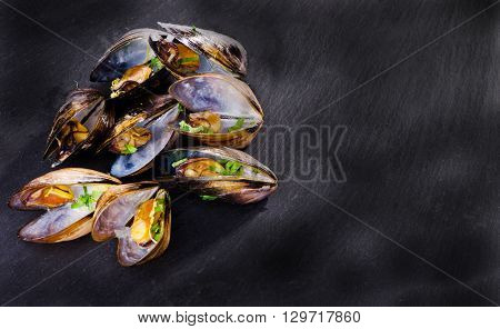 Mussels cooked with zest and parsley on a dark background