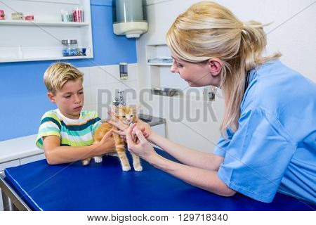 A woman vet putting down a kitten in front of a little boy