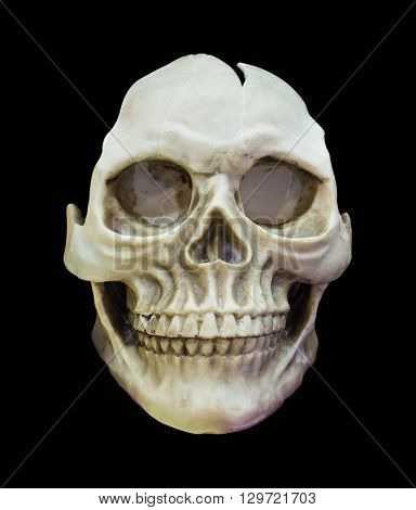 Human skull on isolated black background .