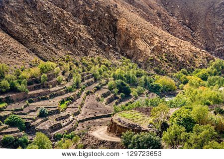 Terraces for growing crops below the village of Tizgui Anti-Atlas mountains in Morocco.