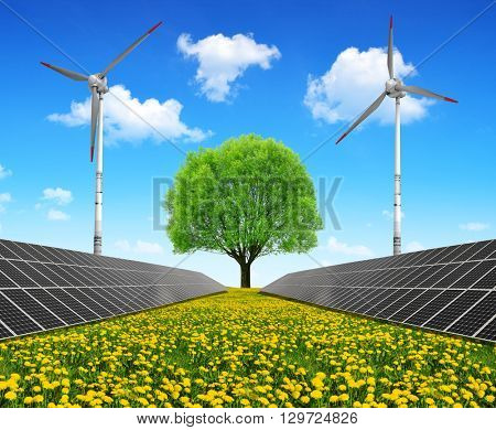 Solar energy panels with wind turbines and tree on dandelion field. Clean energy.