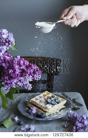 Vegan crispy wafers with blueberries in a rustic setting at the table pours powdered sugar
