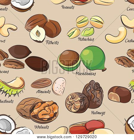 Collection of different nuts pattern. Healthy nutrition and vitamin concept. Heaps of different nuts, walnuts, cashews, almonds and others isolated on white background