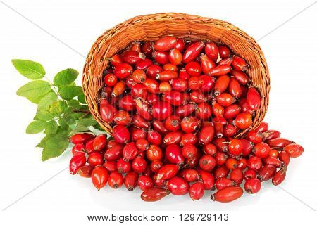 Basket with rose hips isolated on white background