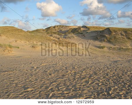 Dunes In Neringa, Lithuania