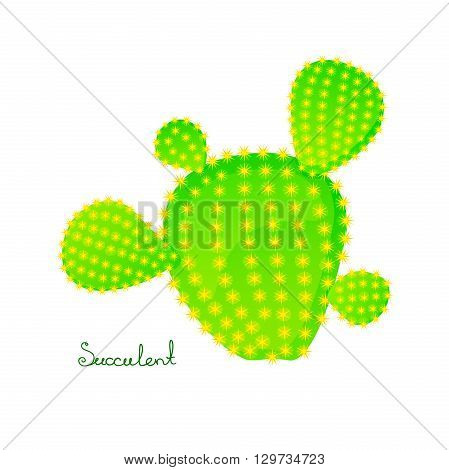 Green prickly pear cactus with four spikes, bright juicy succulent, vector illustration in cartoon style