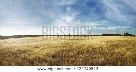 Para Kambera Landscape