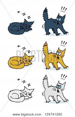 Set of sleeping and scared cat. Colorful hand drawn vector stock illustration