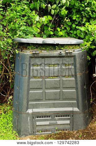 Old dirty composter bin with rotten grass.