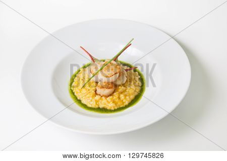 Risotto plate served with fried scallop and pesto sauce