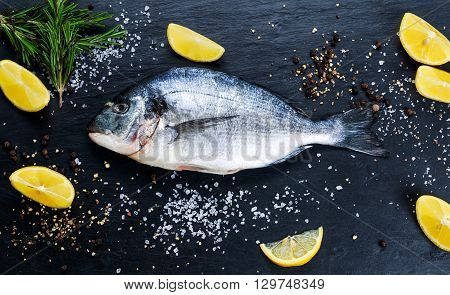 Fresh Raw Sea Bream Fish on blue stone background