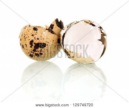 The shell of quail eggs isolated on white background.