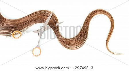 A strand of female hair and scissors isolated on white background.