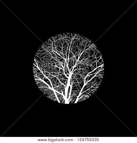 minimalistic cropped image of a winter tree in a circle. design element for cards, simple concise illustration.