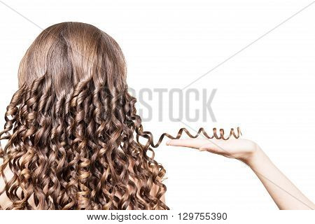 Female hand holding a strand of brown hair curled isolated on a white background.