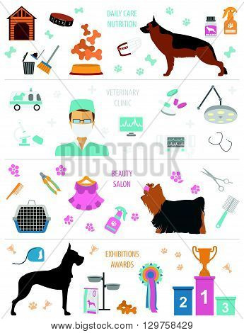 Dog info graphic template. Heatlh care, vet, nutrition, exhibition. Vector illustration