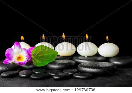 spa still life of row white candles orchid flower dendrobium and green leaf on black zen stones background with dew closeup